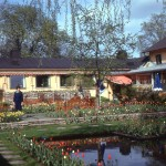 Vintage Garden – 1967