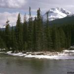 Vintage Mt. Rainier – 1977